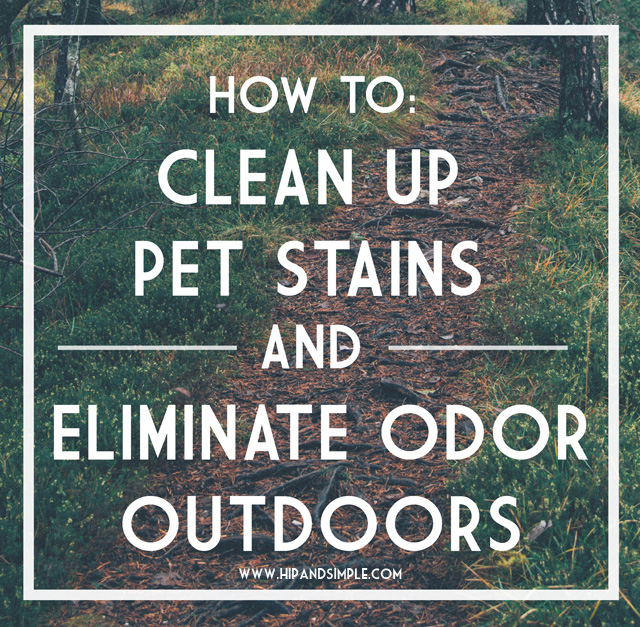How to clean up pet stains and eliminate odor outdoors-01 copy