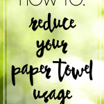 How to Reduce Your Paper Towel Usage