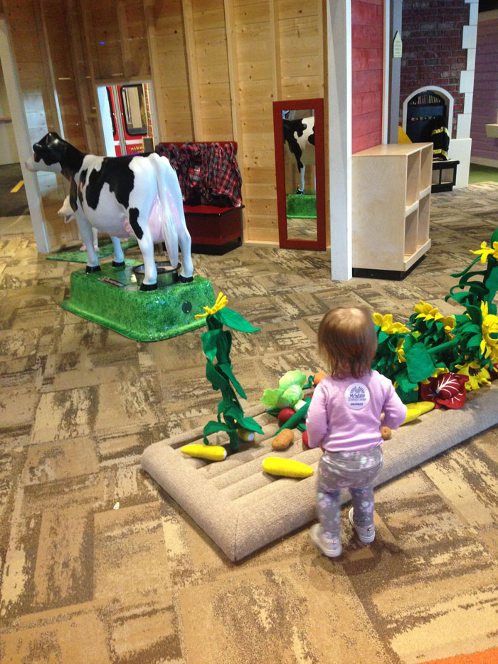 Visit the McWane Science Center - Farm