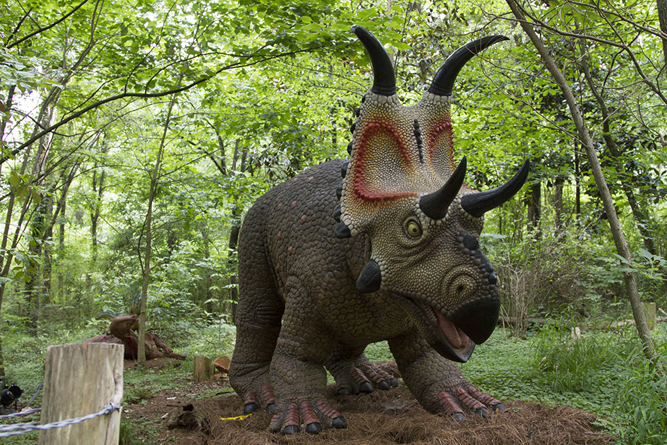 Dino Discovery They're Back - Birmingham, AL Zoo - diabloceratops