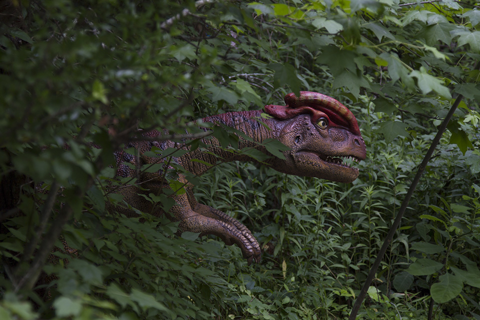 Dino Discovery They're Back - Birmingham, AL Zoo - dilophosaurus 2