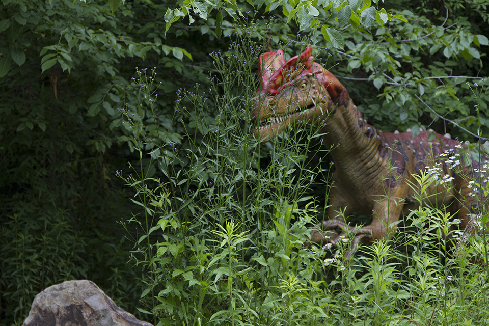 Dino Discovery They're Back - Birmingham, AL Zoo - dilophosaurus