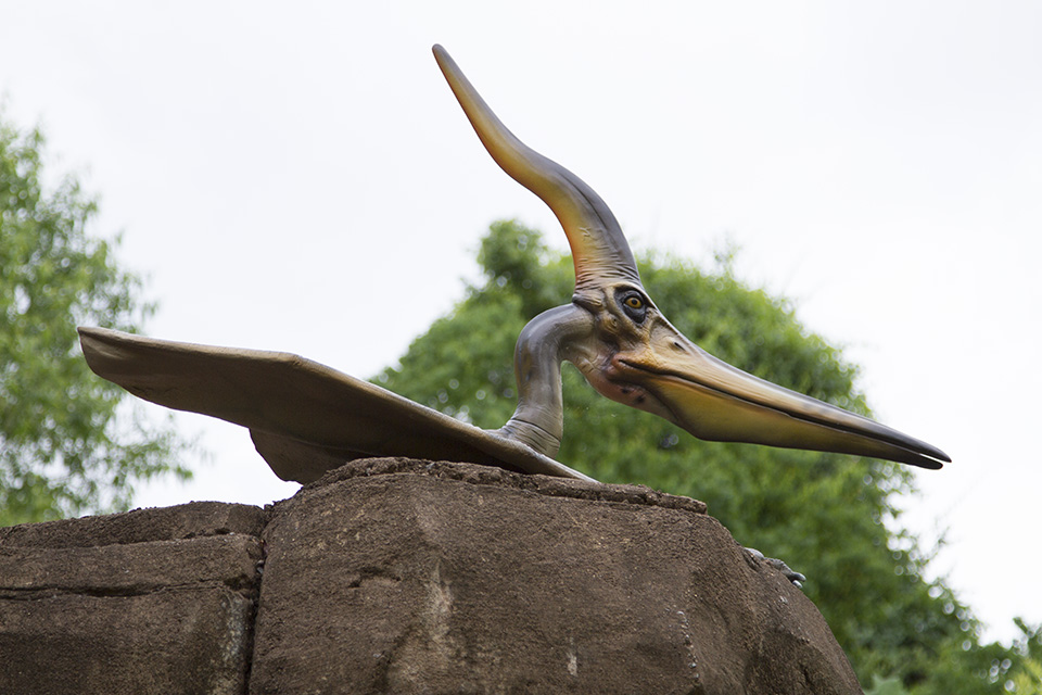 Dino Discovery They're Back - Birmingham, AL Zoo - pteranodon